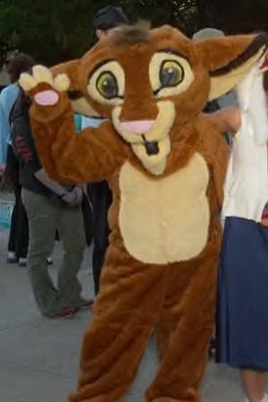 Simba from Lion King, The worn by Lightning Count
