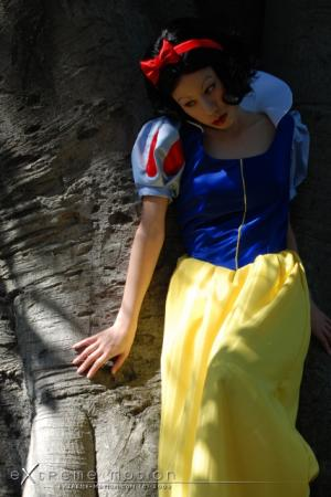 Snow White from Snow White and the Seven Dwarfs worn by Flipper