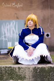 Saber from Fate/Stay Night by Zip