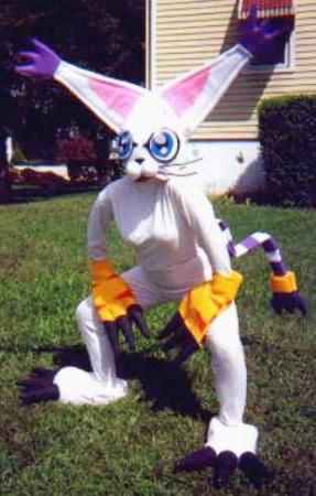 Gatomon from Digimon Adventure
