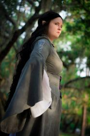 Arwen Undomiel from Lord of the Rings worn by Kairie