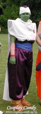 Piccolo from Dragonball Z worn by Kasumi