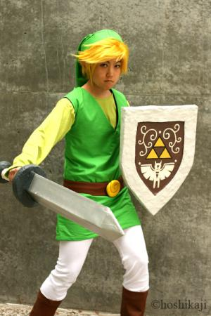 Link from Legend of Zelda: The Wind Waker worn by pikacello
