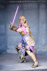 Zelda from Hyrule Warriors worn by Shiva