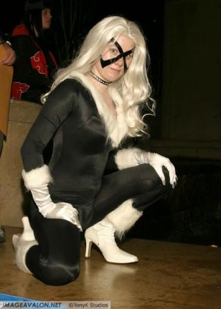 Black Cat from