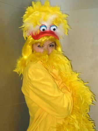 Big Bird from Sesame Street worn by Umigoddess