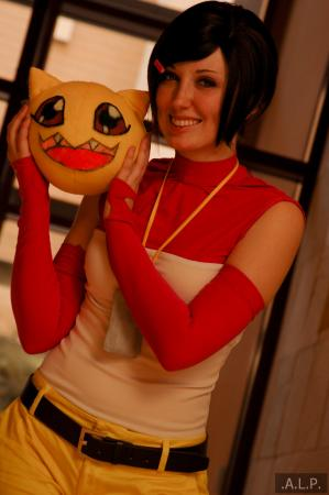 Hikari / Kari Kamiya from Digimon Adventure 02