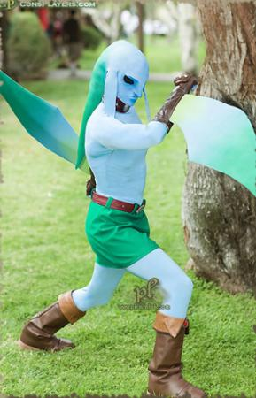 Link from Legend of Zelda: Majora's Mask worn by Pikmin Link