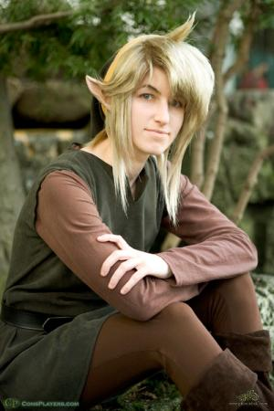 Link from Legend of Zelda worn by Pikmin Link
