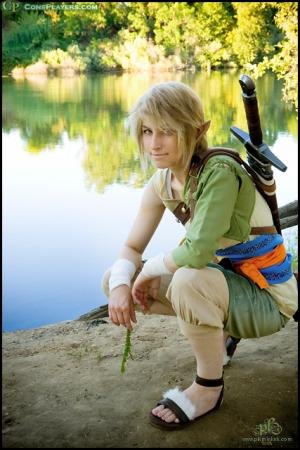 Link from Legend of Zelda: Twilight Princess worn by Pikmin Link