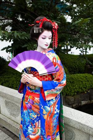 Kimono from Original:  Historical / Renaissance