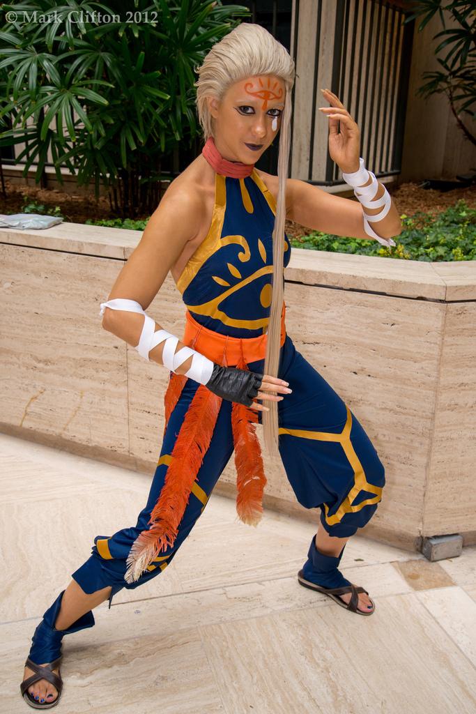 impa skyward sword cosplay - photo #4