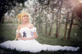 Princess Serenity from Sailor Moon worn by Rosabella