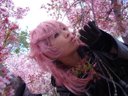 Marluxia from Kingdom Hearts: Chain of Memories worn by Silver Ruby