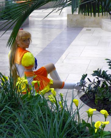 Eternal Sailor Venus from Sailor Moon Sailor Stars