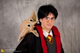 Harry Potter from Harry Potter worn by Fireshark