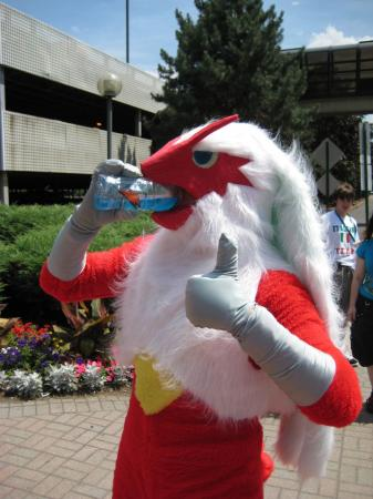 Blaziken from Pokemon worn by Oshi