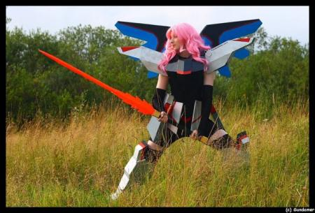 Freedom from Mobile Suit Gundam Seed worn by Naga zmeyuka