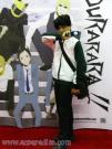 Mikado Ryugamine from Durarara!!