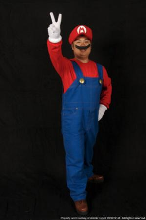 Mario from Super Smash Bros. worn by CardShark