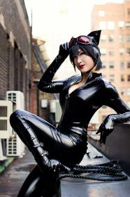 Catwoman from DC Comics by mostflogged