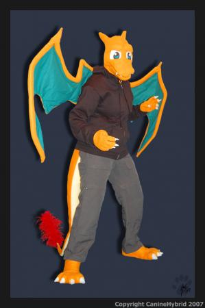 Charizard from Pokemon