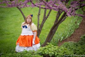 Sailor Venus from Sailor Moon by D. Renee (Diva Shadow)