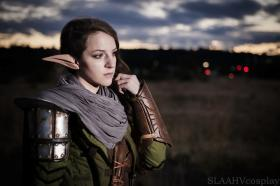 Lavellan from Dragon Age 3: Inquisition  worn by Slaahv
