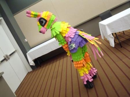 Burro Pinata from Viva Pinata worn by Kyote