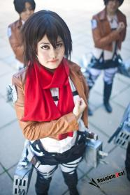 Mikasa Ackerman from Attack on Titan worn by dishonest