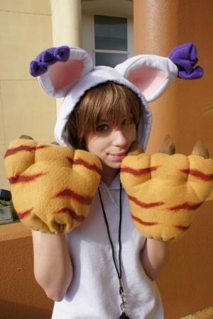 Hikari / Kari Kamiya from Digimon Adventure worn by MangaFreak150