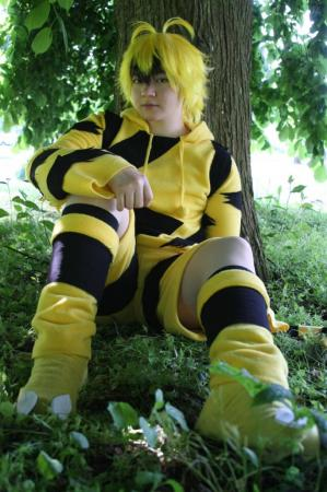 Electabuzz worn by Rai Kamishiro