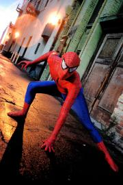 Spiderman from Spider-man worn by EverythingMan