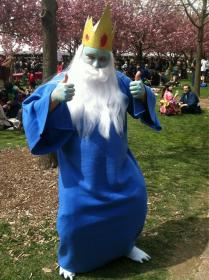 Ice King from Adventure Time with Finn & Jake