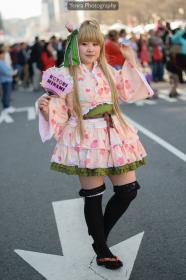 Kotori Minami from Love Live!