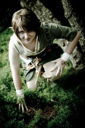 Link from Legend of Zelda: Twilight Princess worn by Seifer-sama