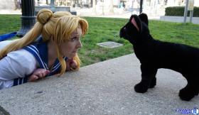 Usagi Tsukino from Sailor Moon Crystal