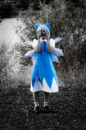 Cirno from Touhou Project