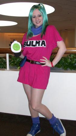 Bulma Briefs from Dragonball