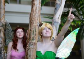 Tinker Bell from Disney Fairies