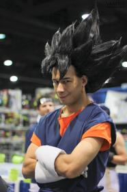 Vegito from Dragonball Z