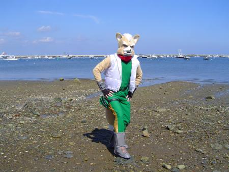 Fox McCloud from Star Fox worn by PatrickD