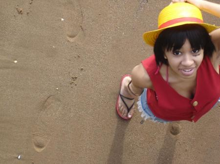 Monkey D. Luffy from One Piece worn by Torii