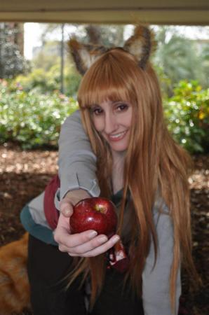 Horo from Spice and Wolf worn by Teren�