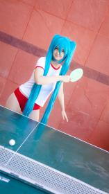 Hatsune Miku from Vocaloid worn by Letho