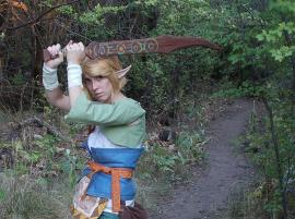 Link from Legend of Zelda: Twilight Princess worn by VFire