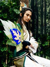 Zhuge Liang from Dynasty Warriors 8