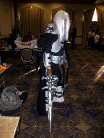 Arthas/Death Knight from Warcraft III: The Frozen Throne worn by Krieger