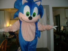 Sonic the Hedgehog from Sonic the Hedgehog Series  by Surferbrg