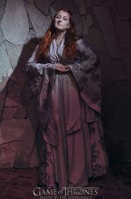 Sansa Stark from Game of Thrones worn by doctorimwaiting